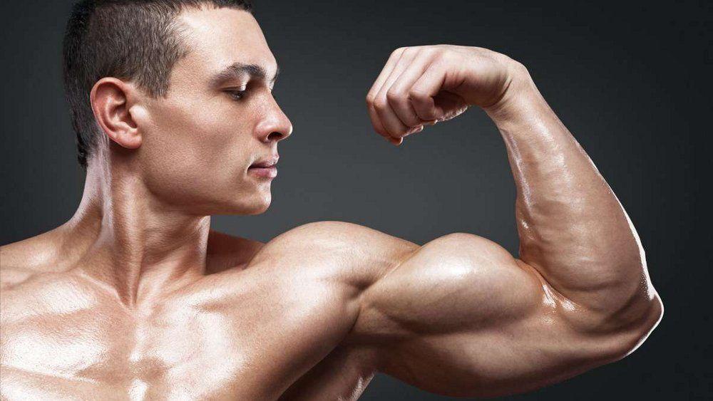 имеет плотные мышцы фото должны получить