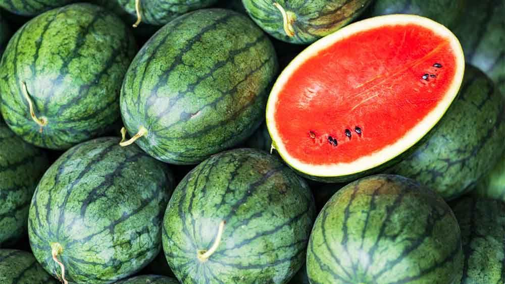 11 простых правил, которые помогут выбрать сладкий арбуз