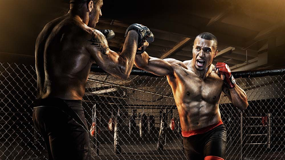 картинки спорта бойцов