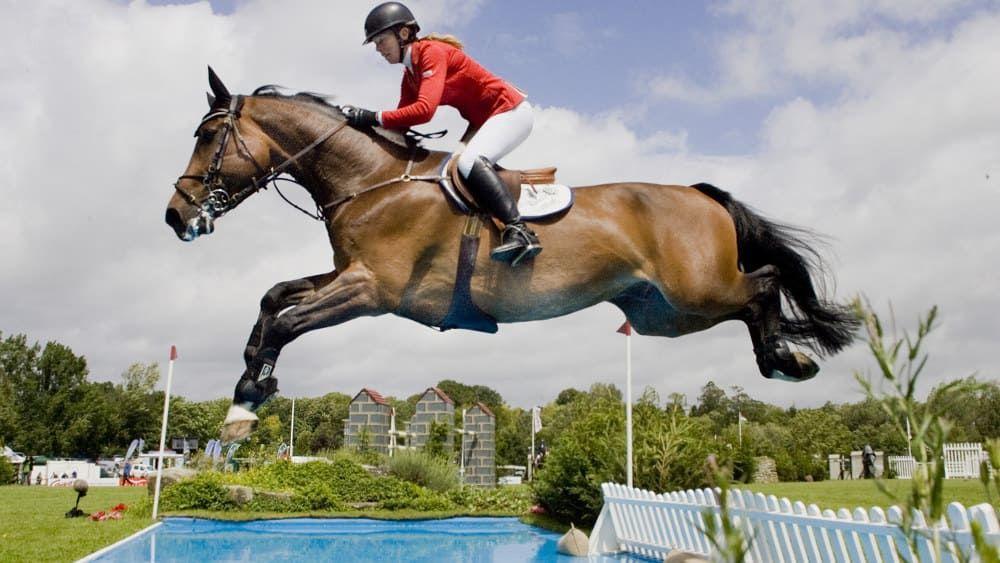 Как проводятся соревнования на лошадях